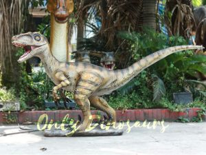 Velociraptor Animatronic Decoration of Park