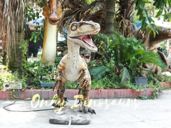 Velociraptor Animatronic Decoration of Park2