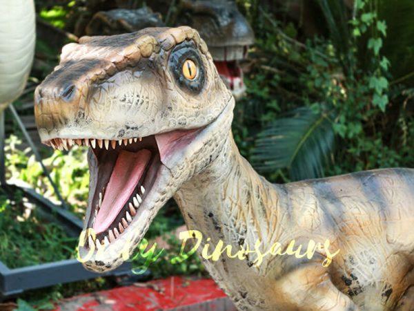 Velociraptor Animatronic Decoration of Park3