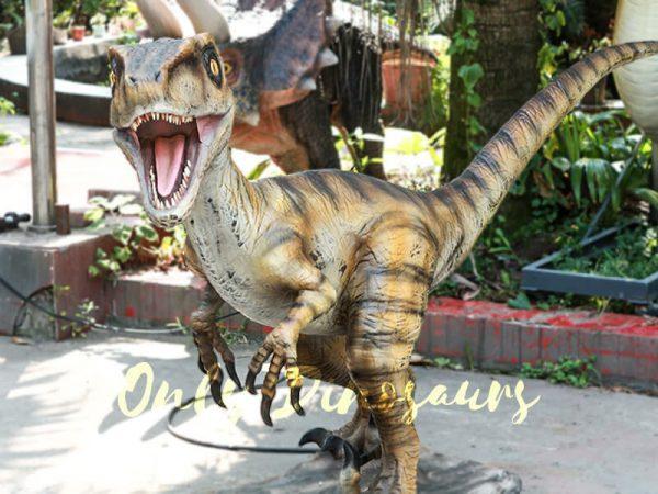 Velociraptor Animatronic Decoration of Park5