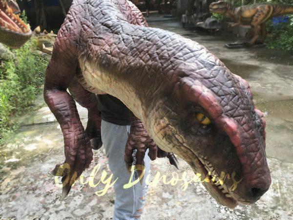 Velociraptor-Shoulder-Puppet-Brown-For-Puppeteer5