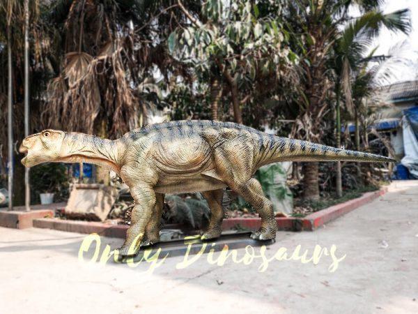 Vivid Dinosaur Animatronic Iguanodon of Dinosaur Exhibition5