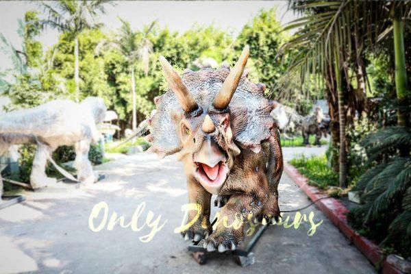 Vivid Exhibit Dinosaur Animatronics Triceratops2
