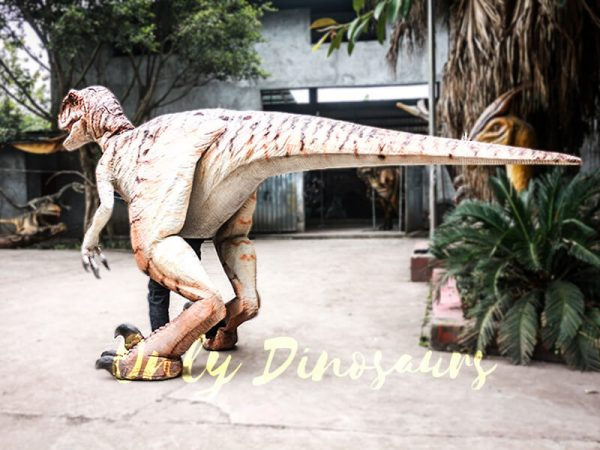 Walking Dinosaurs Raptor Costume Visible Legs5
