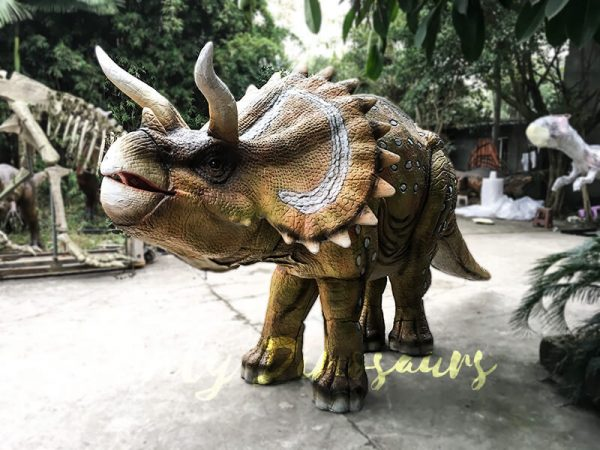 Yellow Triceratops Realistic Dinosaurs Actor Costume3