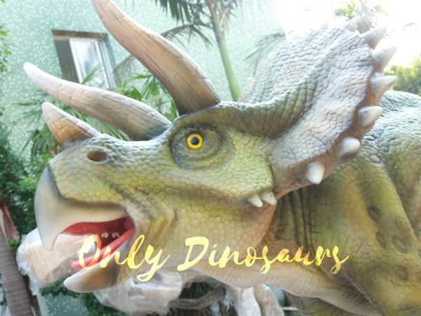 Animatronic-Dinosaur-Show-Lifelike-Triceratops3-1