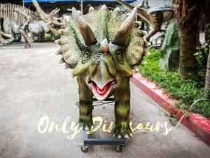 Animatronic Dinosaur Show Lifelike Triceratops