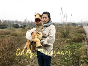 Baby Dinosaur Lifesize Puppet Arm Control