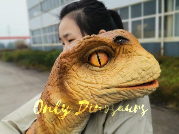 Baby-Dinosaur-Lifesize-Puppet-Arm-Control6