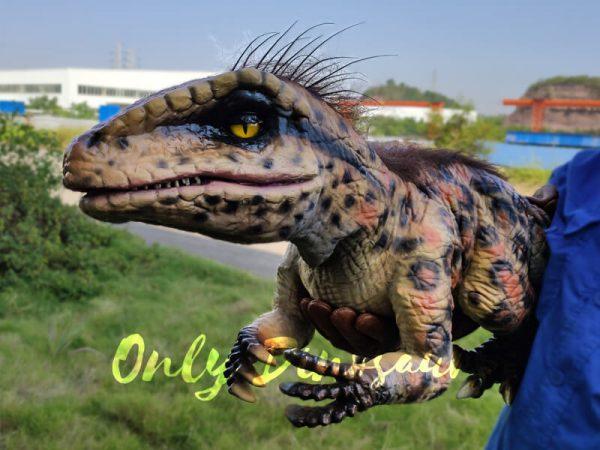 Baby-Raptor-Pantherine-False-Hand-Puppet3-1