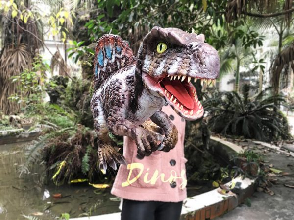Baby Spinosaurus Dinosaur Hand Puppet for Kids4