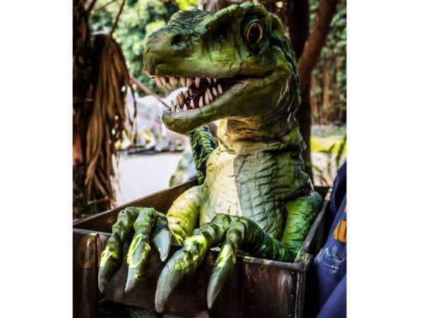 Baby-Velociraptor-Crate-Puppet-Cute-For-Kids4