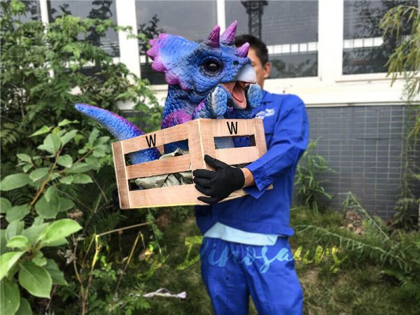 Blue Purple Crated Triceratops Puppet6