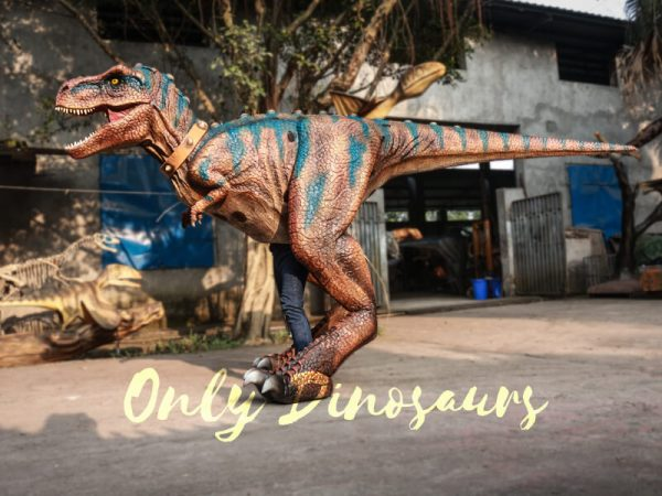 Buy-T-Rex-Costume-For-Sightseeing-Attraction222