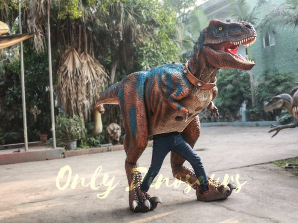 Buy-T-Rex-Costume-For-Sightseeing-Attraction666