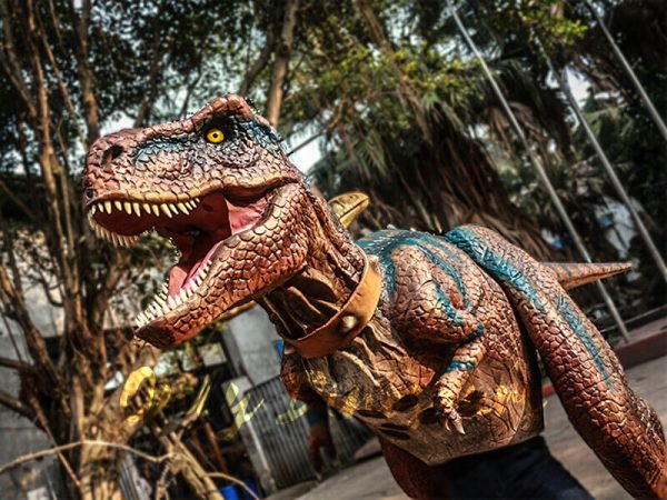 Buy T rex Costume for Sightseeing Attraction1