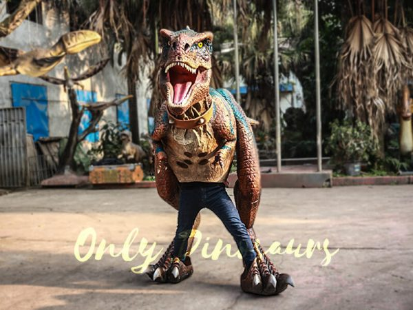 Buy T rex Costume for Sightseeing Attraction2