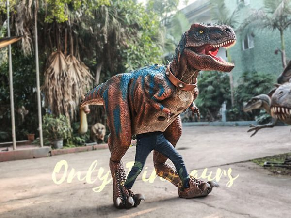 Buy T rex Costume for Sightseeing Attraction3