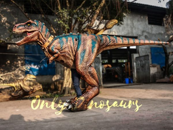 Buy T rex Costume for Sightseeing Attraction4