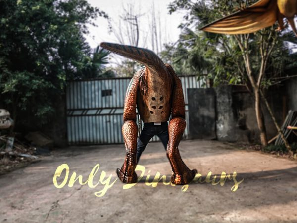 Buy T rex Costume for Sightseeing Attraction5