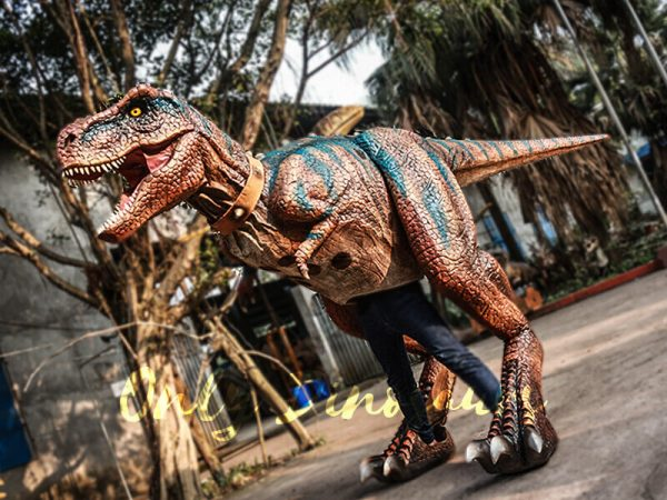 Buy T rex Costume for Sightseeing Attraction6