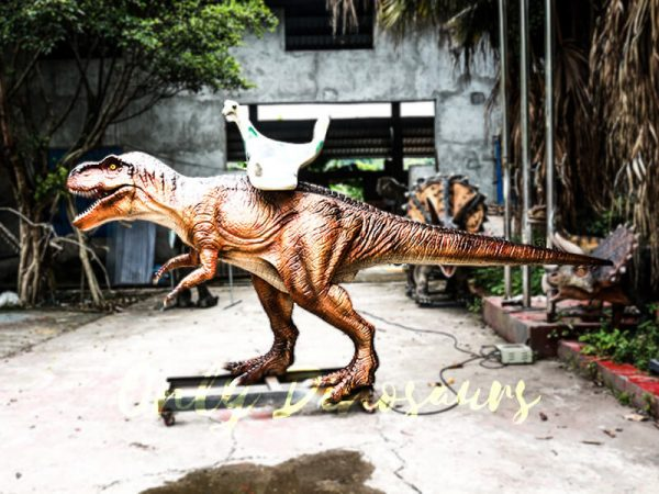 Coin operated Ride on T rex Dinosaur5