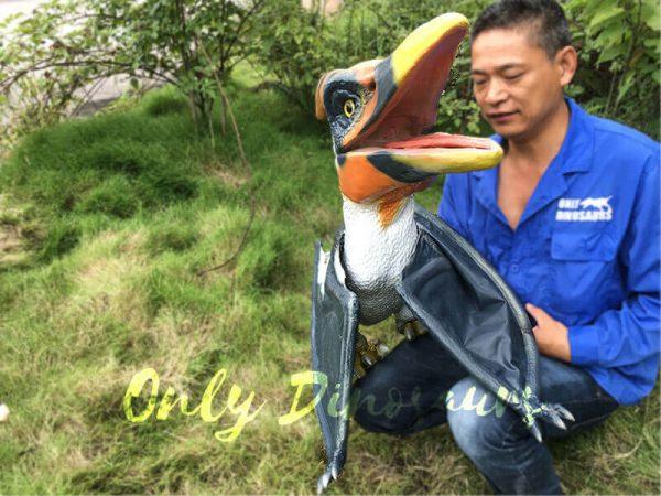 Colorful Animatronic Pterosaur Puppets for sale3