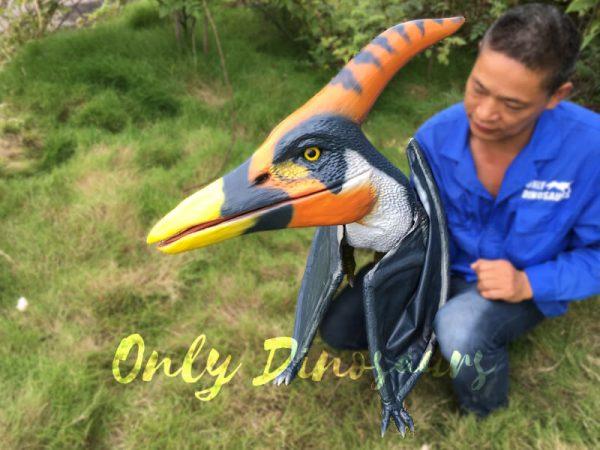 Colorful-Animatronic-Pterosaur-Puppets-for-sale4-1