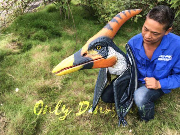 Colorful Animatronic Pterosaur Puppets for sale4