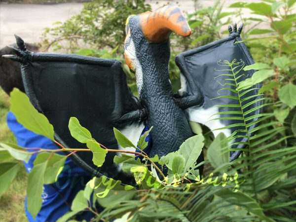 Colorful-Animatronic-Pterosaur-Puppets-for-sale5-1