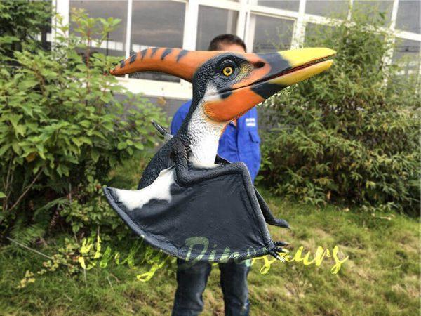 Colorful Animatronic Pterosaur Puppets for sale7