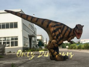Costume Realistic T rex with tiger stripe