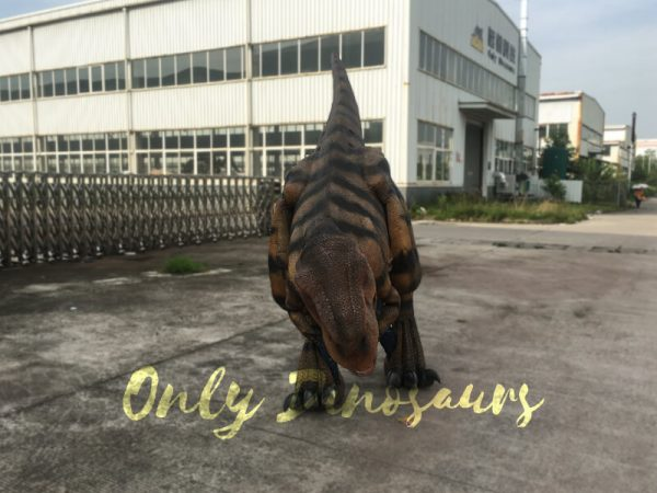 Costume-Realistic-T-Rex-With-Tiger-Stripe333