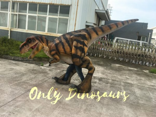 Costume-Realistic-T-Rex-With-Tiger-Stripe444