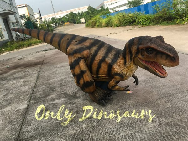 Costume-Realistic-T-Rex-With-Tiger-Stripe555
