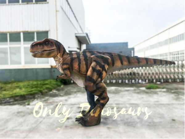 Costume Realistic T rex with tiger stripe2