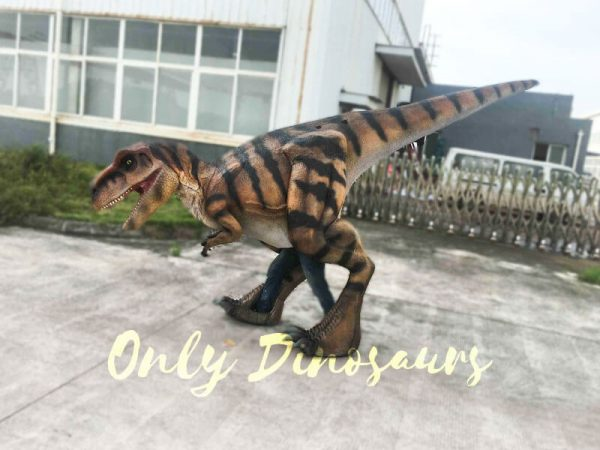 Costume Realistic T rex with tiger stripe4