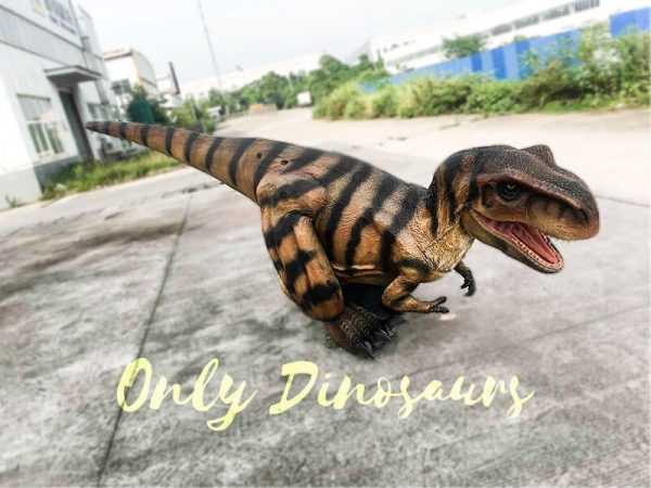 Costume Realistic T rex with tiger stripe5