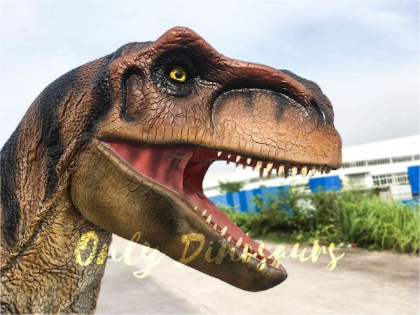Costume Realistic T rex with tiger stripe7