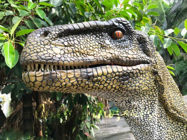 Dinosaur-Costume-Real-Raptor-In-Green222