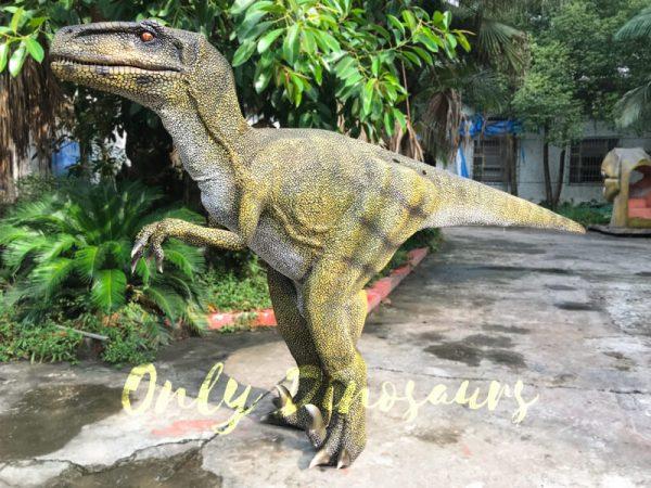Dinosaur-Costume-Real-Raptor-In-Green333