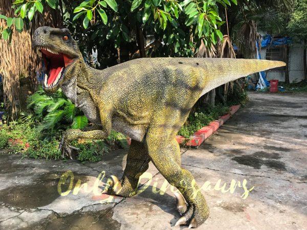 Dinosaur-Costume-Real-Raptor-In-Green555