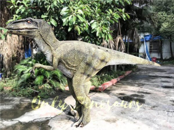 Dinosaur Costume Real Raptor in green1