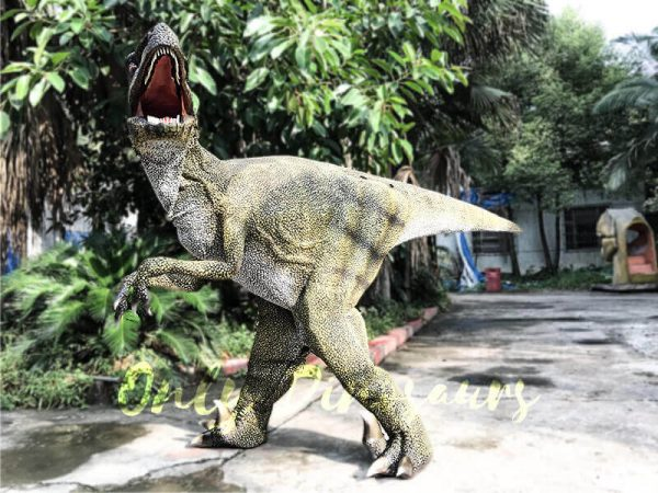 Dinosaur Costume Real Raptor in green2