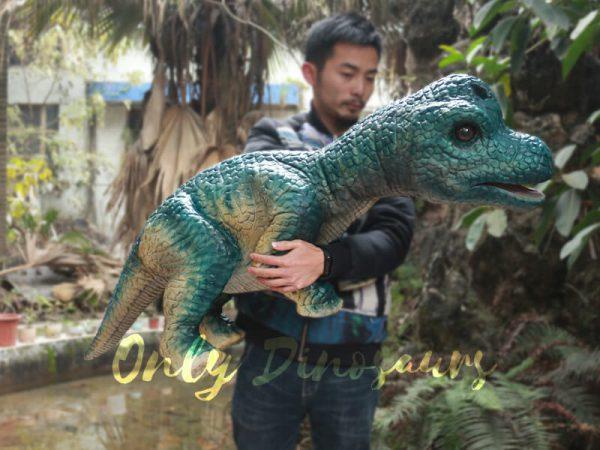 Dinosaur-Hand-Puppet-Brachiosaurus-for-Show1-1
