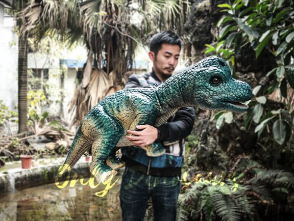 Dinosaur Hand Puppet Brachiosaurus for Show1