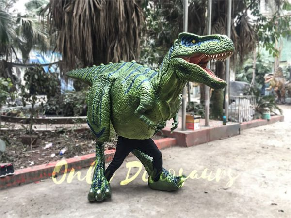Dinosaur Realistic Costume of Green T rex2