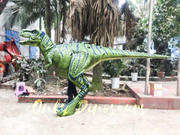 Dinosaur Realistic Costume of Green T rex3