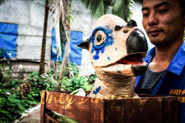 Dinosaur Stygimoloch Crate Puppet Blue Spot1
