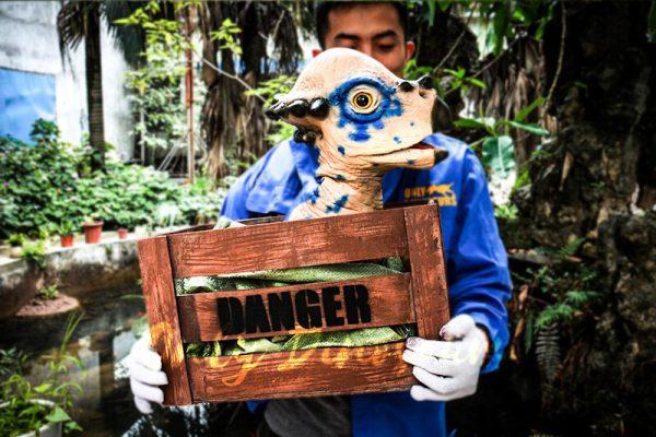Dinosaur Stygimoloch Crate Puppet Blue Spot2